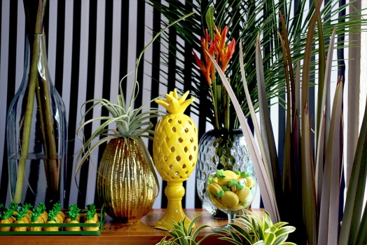 Festa abacaxi 03