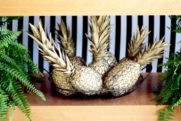 Festa abacaxi 24
