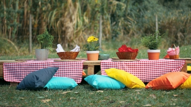 picnic 02