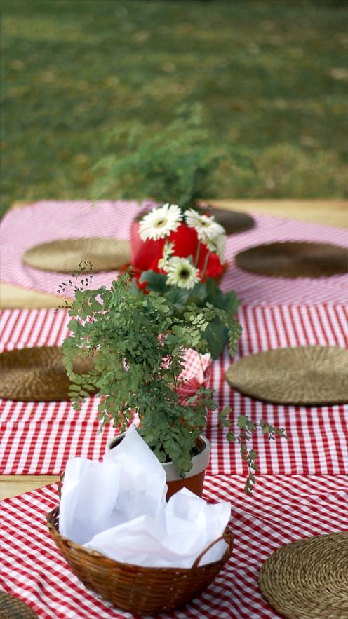picnic 24